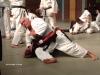 Taijitsu  2006 -05-6-7  - Tyskland 028